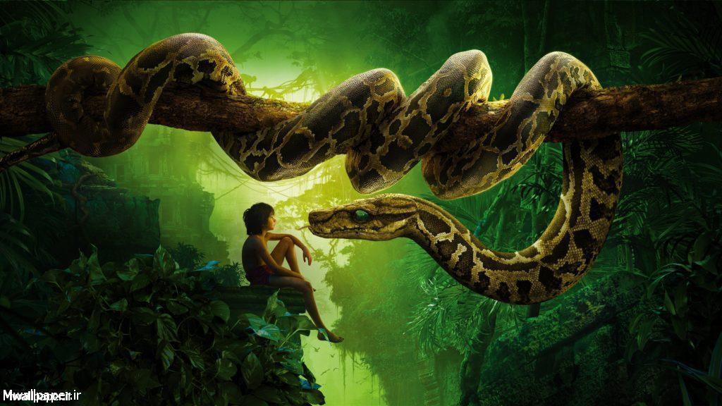 والپیپرهای فیلم The Jungle Book